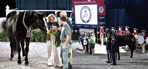 2017 WIHS Honor & Service Award Recipient
